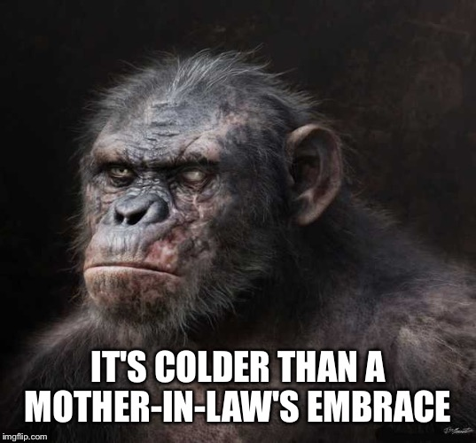 IT'S COLDER THAN A MOTHER-IN-LAW'S EMBRACE | made w/ Imgflip meme maker