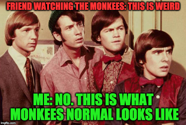 FRIEND WATCHING THE MONKEES: THIS IS WEIRD ME: NO. THIS IS WHAT MONKEES NORMAL LOOKS LIKE | image tagged in monkees | made w/ Imgflip meme maker