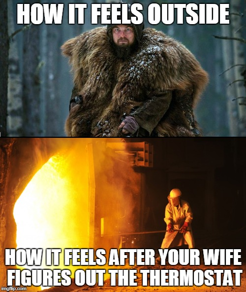 it's too hot, too hot, too hot, lady | HOW IT FEELS OUTSIDE HOW IT FEELS AFTER YOUR WIFE FIGURES OUT THE THERMOSTAT | image tagged in thermostat,central heating,leonardo dicaprio,hot,cold,forge | made w/ Imgflip meme maker
