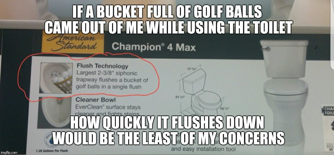 Meanwhile, at a hardware store... | IF A BUCKET FULL OF GOLF BALLS CAME OUT OF ME WHILE USING THE TOILET HOW QUICKLY IT FLUSHES DOWN WOULD BE THE LEAST OF MY CONCERNS | image tagged in memes,toilet,toilet humor | made w/ Imgflip meme maker
