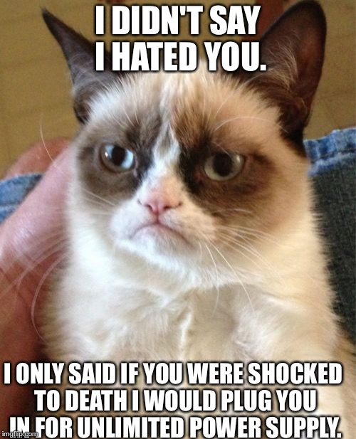 Grumpy Cat |  I DIDN'T SAY I HATED YOU. I ONLY SAID IF YOU WERE SHOCKED TO DEATH I WOULD PLUG YOU IN FOR UNLIMITED POWER SUPPLY. | image tagged in memes,grumpy cat | made w/ Imgflip meme maker