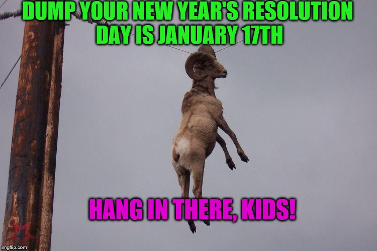It's a meme plus a cheesy joke! ;) | DUMP YOUR NEW YEAR'S RESOLUTION DAY IS JANUARY 17TH HANG IN THERE, KIDS! | image tagged in hang in there | made w/ Imgflip meme maker