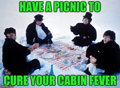 Canadian picnic | HAVE A PICNIC TO CURE YOUR CABIN FEVER | image tagged in canadian picnic | made w/ Imgflip meme maker