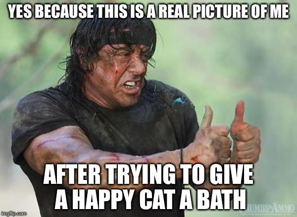 YES BECAUSE THIS IS A REAL PICTURE OF ME AFTER TRYING TO GIVE A HAPPY CAT A BATH | made w/ Imgflip meme maker