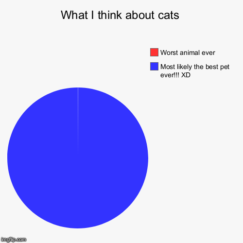 What I Think About Cats | What I think about cats | Most likely the best pet ever!!! XD, Worst animal ever | image tagged in pie charts,cats,animals | made w/ Imgflip pie chart maker