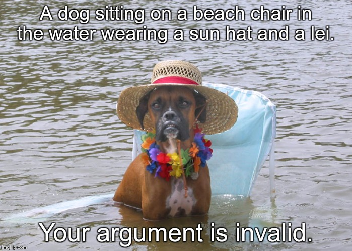 A dog sitting on a beach chair in the water wearing a sun hat and a lei. Your argument is invalid. | image tagged in dog sitting in water wearing sun hat and lei | made w/ Imgflip meme maker