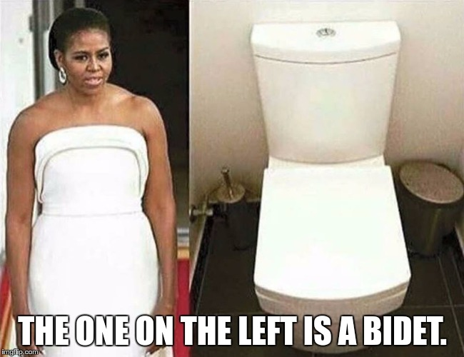 THE ONE ON THE LEFT IS A BIDET. | image tagged in mooche_toilet | made w/ Imgflip meme maker