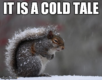 IT IS A COLD TALE | made w/ Imgflip meme maker
