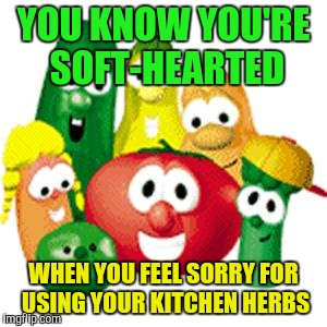 YOU KNOW YOU'RE SOFT-HEARTED WHEN YOU FEEL SORRY FOR USING YOUR KITCHEN HERBS | image tagged in veggie tales | made w/ Imgflip meme maker