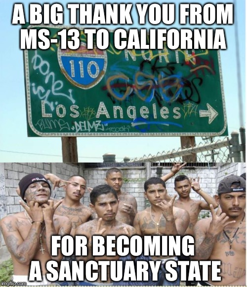 Good luck with that | A BIG THANK YOU FROM MS-13 TO CALIFORNIA FOR BECOMING A SANCTUARY STATE | image tagged in california | made w/ Imgflip meme maker