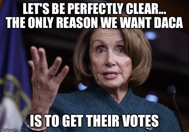 LET'S BE PERFECTLY CLEAR... THE ONLY REASON WE WANT DACA IS TO GET THEIR VOTES | image tagged in good old nancy pelosi | made w/ Imgflip meme maker
