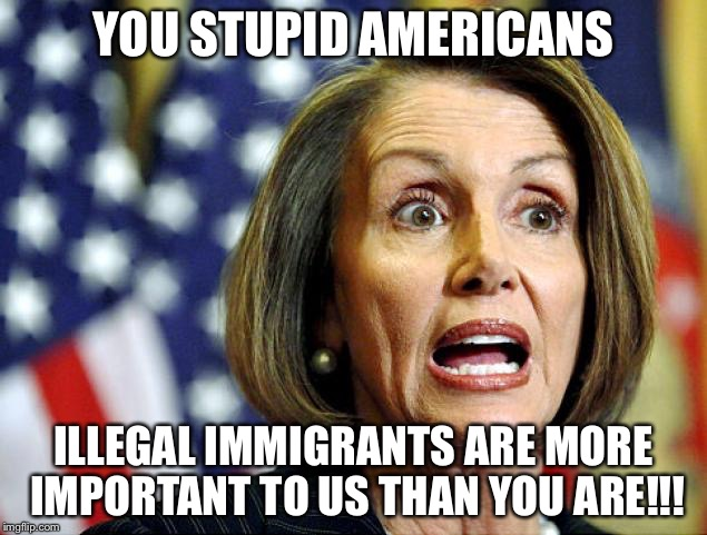 Pelosi | YOU STUPID AMERICANS ILLEGAL IMMIGRANTS ARE MORE IMPORTANT TO US THAN YOU ARE!!! | image tagged in pelosi | made w/ Imgflip meme maker