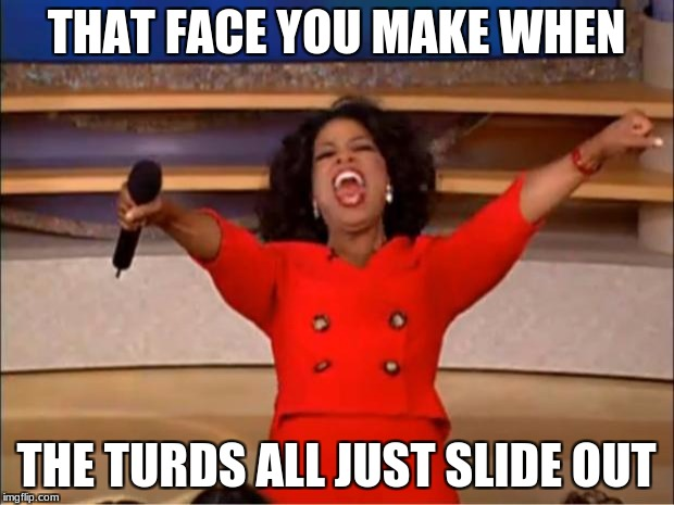Oprah You Get A Meme | THAT FACE YOU MAKE WHEN THE TURDS ALL JUST SLIDE OUT | image tagged in memes,oprah you get a | made w/ Imgflip meme maker