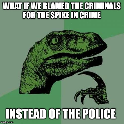 Philosoraptor Meme | WHAT IF WE BLAMED THE CRIMINALS FOR THE SPIKE IN CRIME INSTEAD OF THE POLICE | image tagged in memes,philosoraptor | made w/ Imgflip meme maker