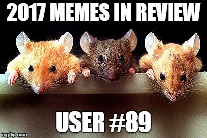 Dec.31 to Feb.1 - 2017 Memes in Review. My favorite 2017 memes from each user on the Top 100 leaderboard. | 2017 MEMES IN REVIEW USER #89 | image tagged in 3 mice,memes,top users,swing4thefence,favorites,2017 memes in review | made w/ Imgflip meme maker