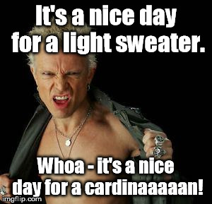 It's a little chilly for Billy. | It's a nice day for a light sweater. Whoa - it's a nice day for a cardinaaaaan! | image tagged in billy idol,memes,meme | made w/ Imgflip meme maker