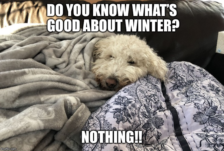 Winter | DO YOU KNOW WHAT'S GOOD ABOUT WINTER? NOTHING!! | image tagged in winter | made w/ Imgflip meme maker