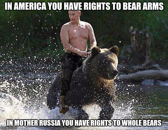 I bet its been on the website before but | IN AMERICA YOU HAVE RIGHTS TO BEAR ARMS IN MOTHER RUSSIA YOU HAVE RIGHTS TO WHOLE BEARS | image tagged in father russia,i hope no one done it before | made w/ Imgflip meme maker