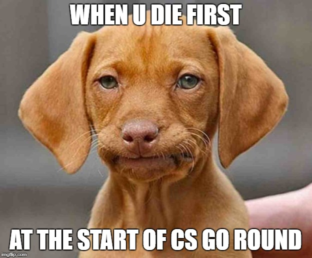 WAITING... | WHEN U DIE FIRST AT THE START OF CS GO ROUND | image tagged in disappointed,cs go,gaming,meme,memes,funny memes | made w/ Imgflip meme maker