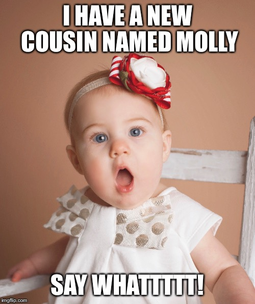 I HAVE A NEW COUSIN NAMED MOLLY SAY WHATTTTT! | image tagged in baby | made w/ Imgflip meme maker