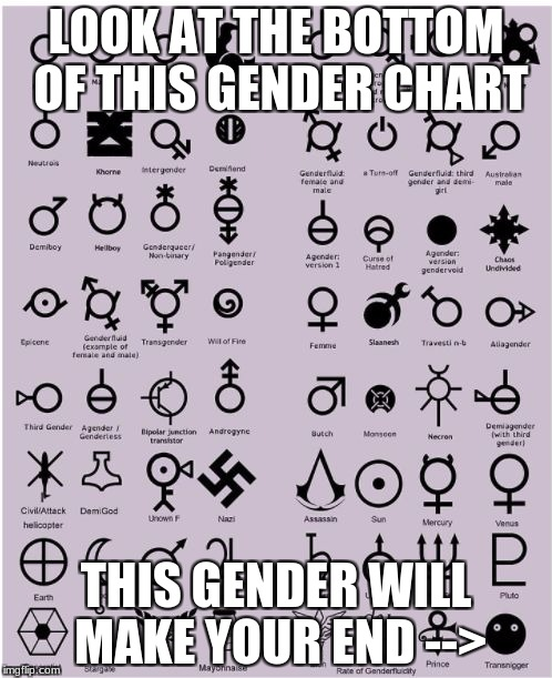 LOOK AT THE BOTTOM OF THIS GENDER CHART THIS GENDER WILL MAKE YOUR END --> | image tagged in gender chart | made w/ Imgflip meme maker