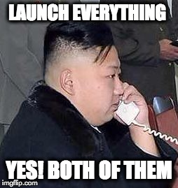 Launch Everything | LAUNCH EVERYTHING YES! BOTH OF THEM | image tagged in kim,memes,north korea | made w/ Imgflip meme maker