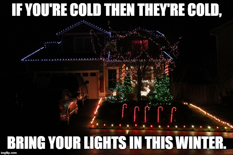 If you're cold... | IF YOU'RE COLD THEN THEY'RE COLD, BRING YOUR LIGHTS IN THIS WINTER. | image tagged in christmas memes | made w/ Imgflip meme maker