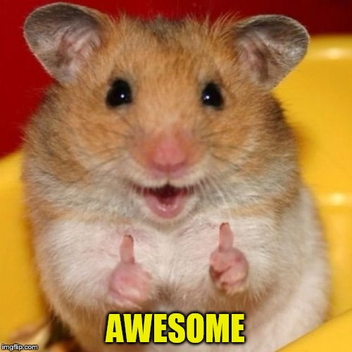 Two Thumbs Up | AWESOME | image tagged in two thumbs up | made w/ Imgflip meme maker