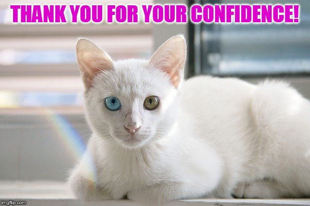 THANK YOU FOR YOUR CONFIDENCE! | made w/ Imgflip meme maker