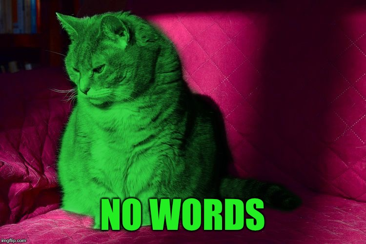 Cantankerous RayCat | NO WORDS | image tagged in cantankerous raycat | made w/ Imgflip meme maker