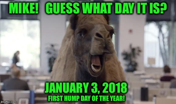 Mike!  Mike!  Mike! | MIKE!   GUESS WHAT DAY IT IS? JANUARY 3, 2018 FIRST HUMP DAY OF THE YEAR! | image tagged in hump day camel | made w/ Imgflip meme maker
