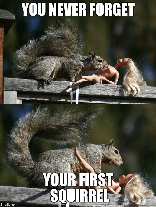 YOU NEVER FORGET YOUR FIRST SQUIRREL | made w/ Imgflip meme maker