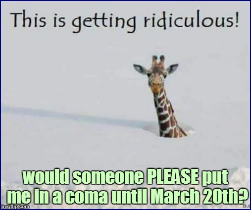 Yes, I'm sick of snow already! | would someone PLEASE put me in a coma until March 20th? | image tagged in funny | made w/ Imgflip meme maker