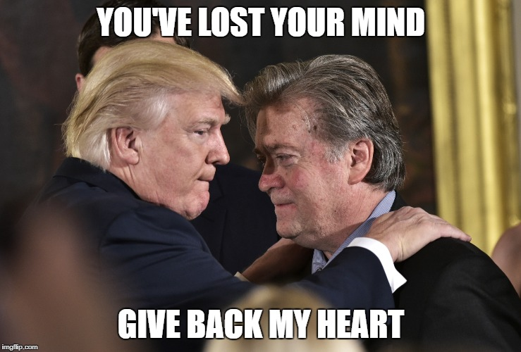 Bro Breakup |  YOU'VE LOST YOUR MIND; GIVE BACK MY HEART | image tagged in trump,president,steve,bannon,bros,breakup | made w/ Imgflip meme maker
