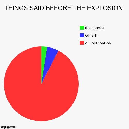 THINGS SAID BEFORE THE EXPLOSION | ALLAHU AKBAR, OH SHI-, It's a bomb! | image tagged in funny,pie charts | made w/ Imgflip pie chart maker