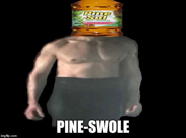 Pine-Swole | PINE-SWOLE | image tagged in ben swolo | made w/ Imgflip meme maker