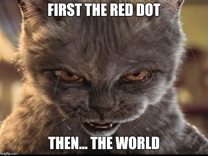 FIRST THE RED DOT THEN... THE WORLD | image tagged in evil-cat | made w/ Imgflip meme maker