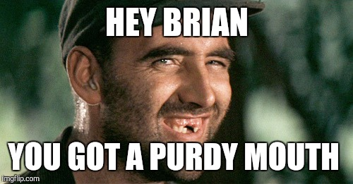 HEY BRIAN YOU GOT A PURDY MOUTH | made w/ Imgflip meme maker
