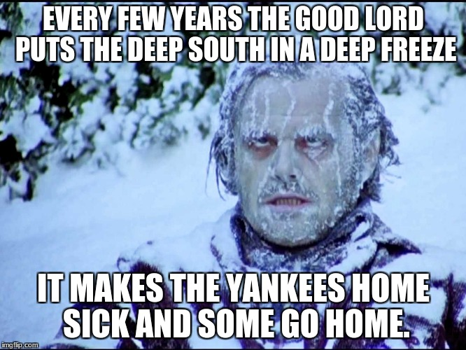 Cold in florida | EVERY FEW YEARS THE GOOD LORD PUTS THE DEEP SOUTH IN A DEEP FREEZE IT MAKES THE YANKEES HOME SICK AND SOME GO HOME. | image tagged in cold in florida | made w/ Imgflip meme maker