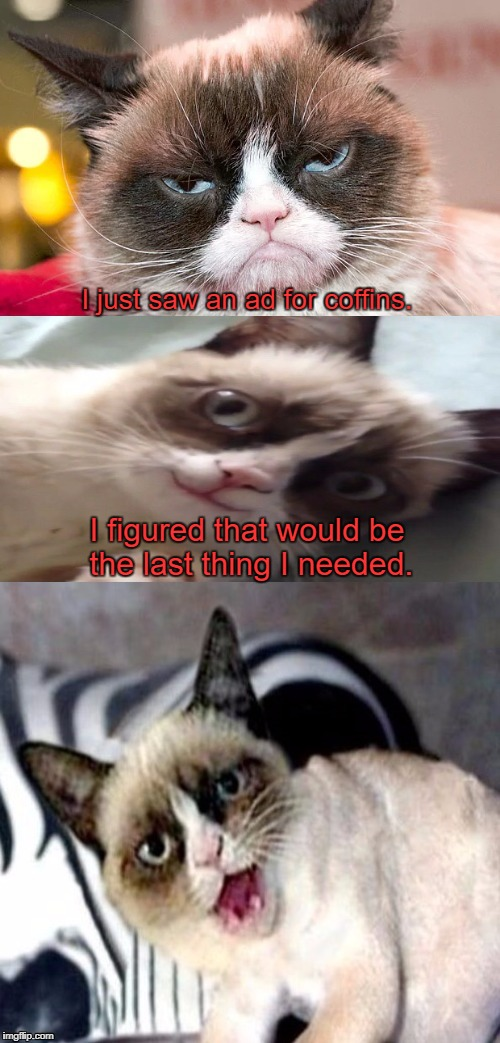 Bad Pun Grumpy Cat | I just saw an ad for coffins. I figured that would be the last thing I needed. | image tagged in bad pun grumpy cat,memes | made w/ Imgflip meme maker