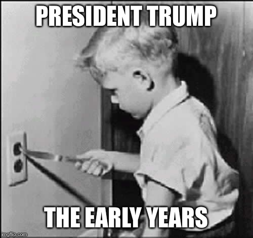 PRESIDENT TRUMP THE EARLY YEARS | image tagged in heck2869 | made w/ Imgflip meme maker