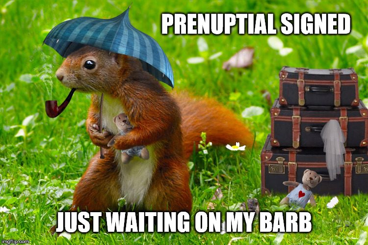 PRENUPTIAL SIGNED JUST WAITING ON MY BARB | made w/ Imgflip meme maker