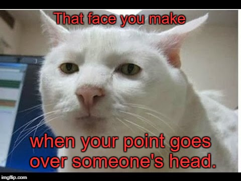 Surprised Face  | That face you make when your point goes over someone's head. | image tagged in surprised face,memes | made w/ Imgflip meme maker