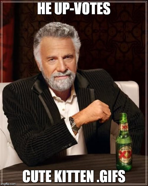 The Most Interesting Man In The World Meme | HE UP-VOTES CUTE KITTEN .GIFS | image tagged in memes,the most interesting man in the world | made w/ Imgflip meme maker