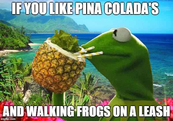 vacation kermit | IF YOU LIKE PINA COLADA'S AND WALKING FROGS ON A LEASH | image tagged in vacation kermit | made w/ Imgflip meme maker
