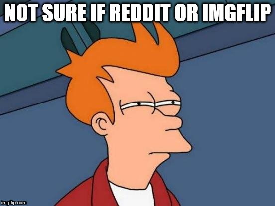 Futurama Fry Meme | NOT SURE IF REDDIT OR IMGFLIP | image tagged in memes,futurama fry | made w/ Imgflip meme maker