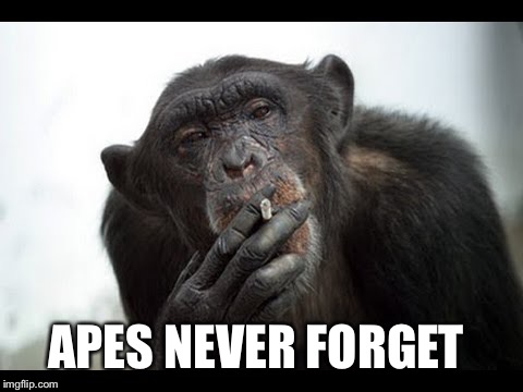 APES NEVER FORGET | made w/ Imgflip meme maker
