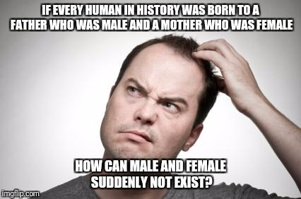 Confused guy | IF EVERY HUMAN IN HISTORY WAS BORN TO A FATHER WHO WAS MALE AND A MOTHER WHO WAS FEMALE HOW CAN MALE AND FEMALE SUDDENLY NOT EXIST? | image tagged in confused guy,male,female | made w/ Imgflip meme maker