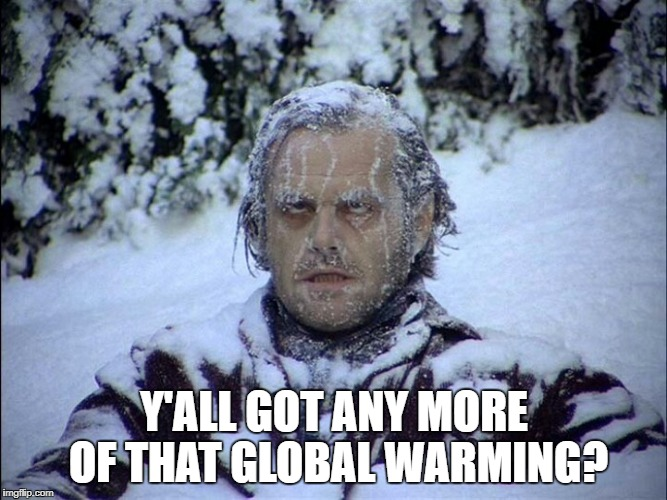 That's cold | Y'ALL GOT ANY MORE OF THAT GLOBAL WARMING? | image tagged in cold weather | made w/ Imgflip meme maker