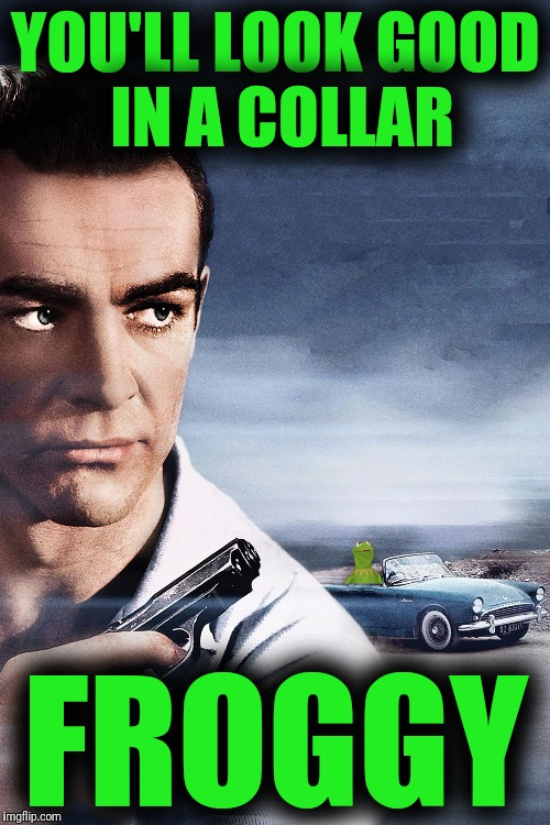 Connery vs Kermit | YOU'LL LOOK GOOD IN A COLLAR FROGGY | image tagged in connery vs kermit | made w/ Imgflip meme maker
